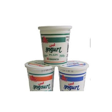 Phoenicia Yogurt Plain 750g