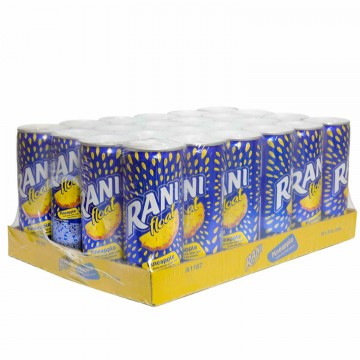 Pineapple Juice 24 x 240ml